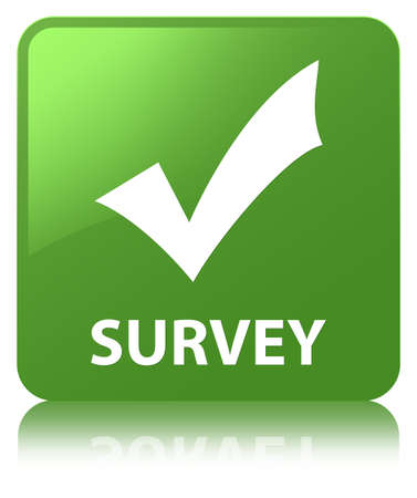 Survey (validate icon) isolated on soft green square button reflected abstract illustration