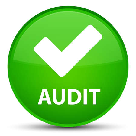 Audit (validate icon) isolated on special green round button abstract illustration