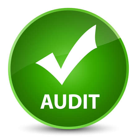 Audit (validate icon) isolated on elegant green round button abstract illustration Stock Photo
