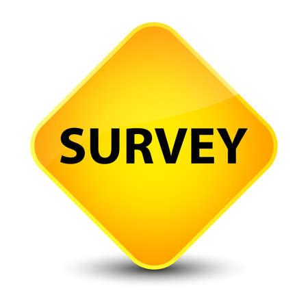 inquiry: Survey isolated on elegant yellow diamond button abstract illustration