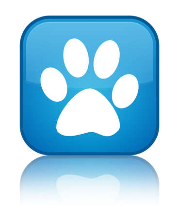 Animal footprint icon isolated on special cyan blue square button reflected abstract illustration Stock Photo