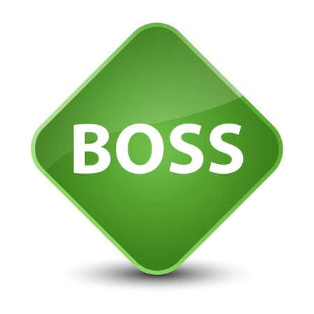 Boss isolated on elegant soft green diamond button abstract illustration Фото со стока