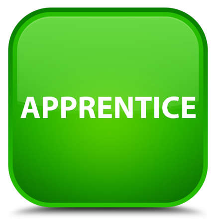novice: Apprentice isolated on special green square button abstract illustration