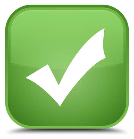 validation: Validation icon isolated on special soft green square button abstract illustration