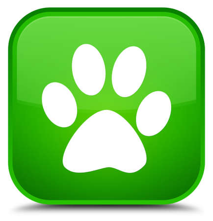 footmark: Animal footprint icon isolated on special green square button abstract illustration