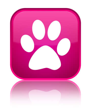 Animal footprint icon isolated on special pink square button reflected abstract illustration