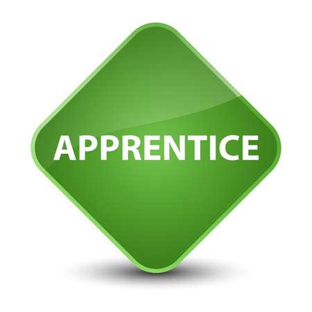 novice: Apprentice isolated on elegant soft green diamond button abstract illustration