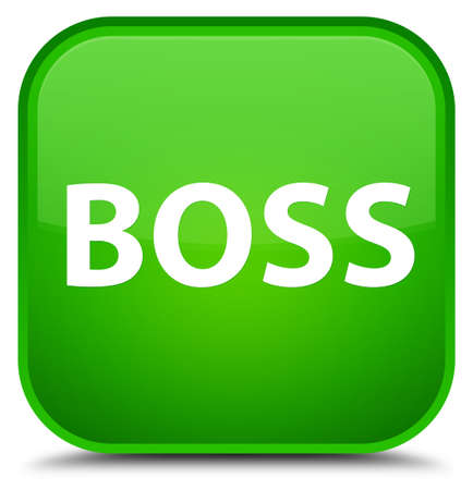Boss isolated on special green square button abstract illustration
