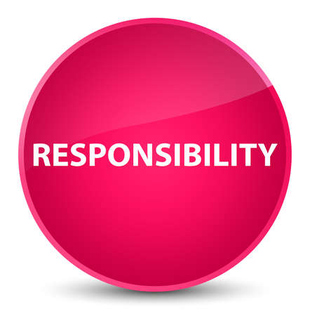 Responsibility isolated on elegant pink round button abstract illustration