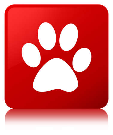 footmark: Animal footprint icon isolated on red square button reflected abstract illustration Stock Photo