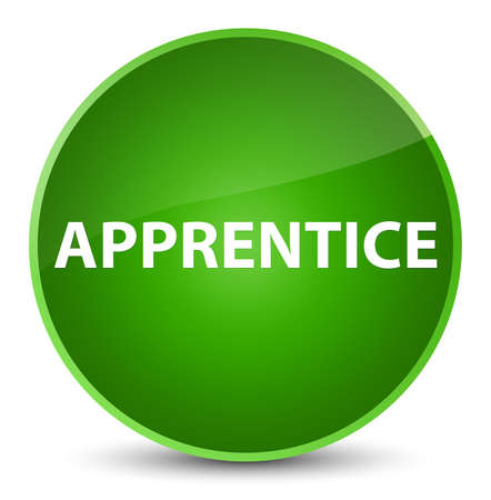 novice: Apprentice isolated on elegant green round button abstract illustration