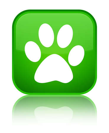 Animal footprint icon isolated on special green square button reflected abstract illustration