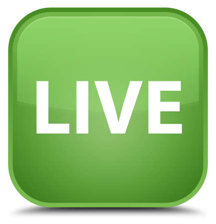 Live isolated on special soft green square button abstract illustration Stock Photo