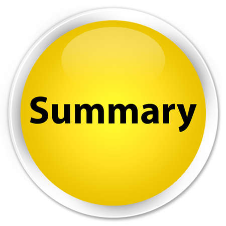 Summary isolated on premium yellow round button abstract illustration