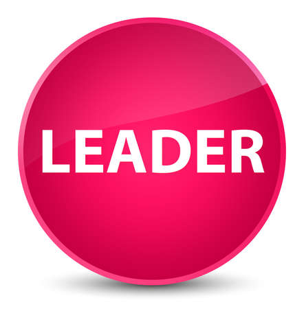 Leader isolated on elegant pink round button abstract illustration