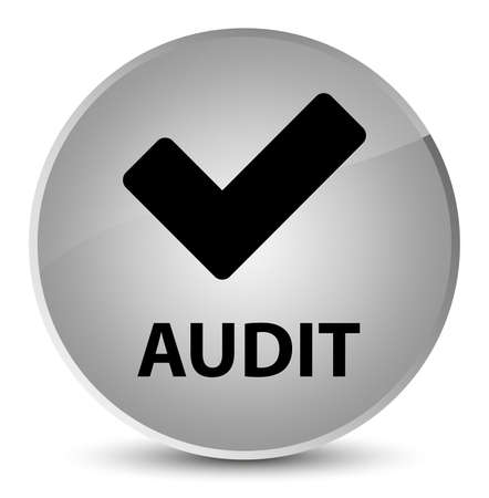 Audit (validate icon) isolated on elegant white round button abstract illustration