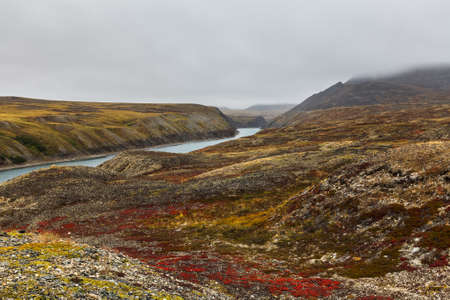 tundra: Colorful autumn tundra and river Amguema Chukotka, Russia