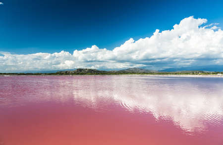 republic dominican: Pink water salt lake in Dominican Republic. Stock Photo