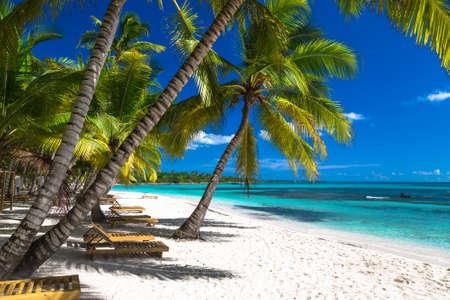 Tropischer Strand im Karibischen Meer, Insel Saona, Dominikanische Republik.