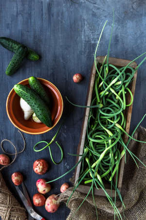 scapes: Fresh garlic scapes, potatoes and cucumbers, top view, place for text