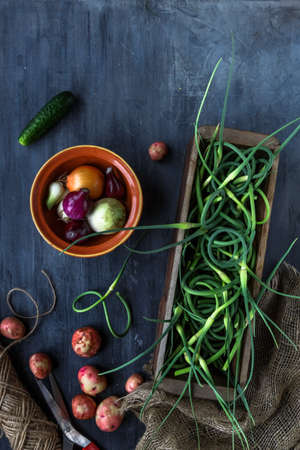 scapes: Fresh garlic scapes, potatoes on dark background, top view, place for text