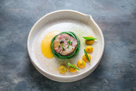 Haute cuisine, Pork sous vide steak, Fine dining. Reklamní fotografie