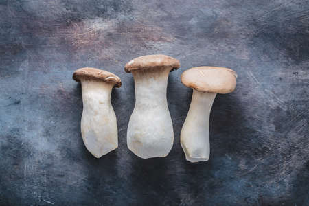 King oyster mushroom, Pleurotus eryngii, on dark background.