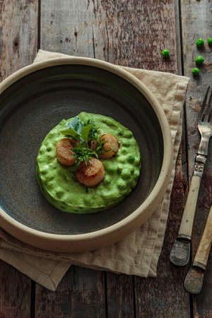 Seared Scallops with pea puree on a plate close view 写真素材