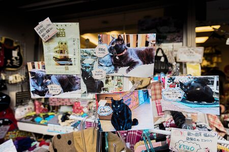 reminiscent: Tokyo, Japan - January 09, 2016: Cat Themed Shop window in Yanaka, the cats town. Yanaka  is one of the few districts in Tokyo where the shitamachi atmosphere, an old town ambience reminiscent of Tokyo from past decades, still survives.