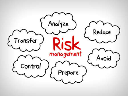 risk management strategies - ignore, accept, avoid, reduce, transfer and exploit
