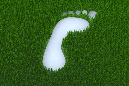 footprint on grass 3d illustration illustration