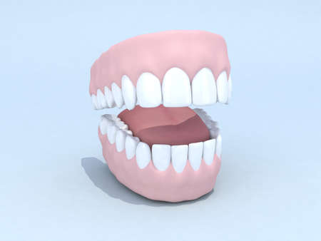 open denture 3d illustration illustration