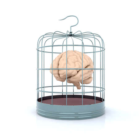 confinement: brain in birdcage 3d illustration Stock Photo