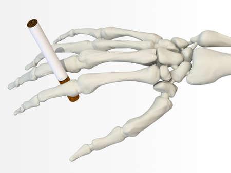 Hand Skeleton with cigarette 3d illustration Stock Illustration - 9428224