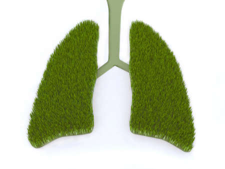 man in air: green lung 3d illustration