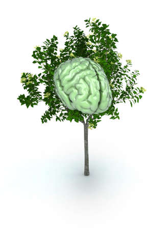 brain stem: green brain tree 3d illustration Stock Photo