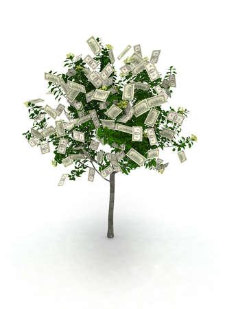金のなる木、100 ドル ノート果物が好きです。