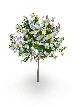money tree, euro notes like fruits Stock Photo - 9856809
