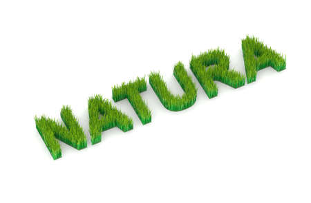 collective bargaining: written natura with grass 3d illustration