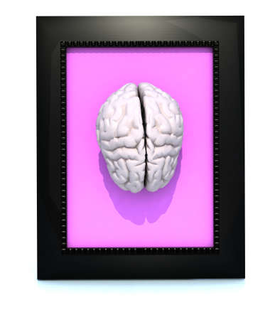 human brain in a framework, 3d illustration