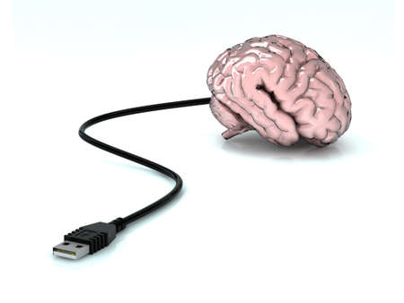 usb storage device: brain with attached USB cable
