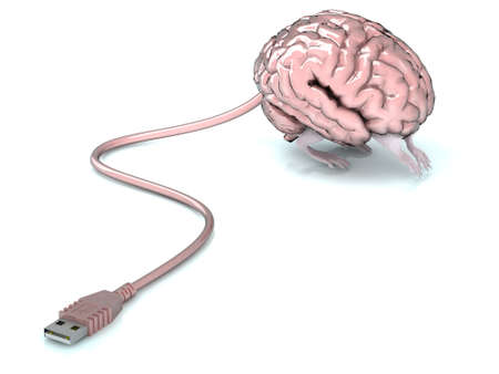 brain with legs attached to USB cable  photo