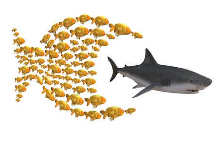 fisch gruppe jagen Hai, ist Konzept der Einheit Stärke, 3d illustration