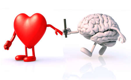 relay between brain and heart, the concept of organ donation or cooperation, exchange of expertise Stock Photo