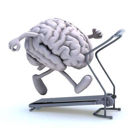 muscle training: menschliche Gehirn mit Armen und Beinen auf einem Laufband, 3d illustration