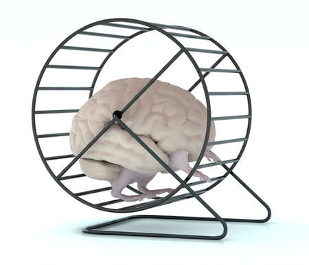 human brain with arms and legs in hamster wheel, 3d illustration Archivio Fotografico