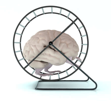 spinning wheel: human brain with arms and legs in hamster wheel, 3d illustration Stock Photo