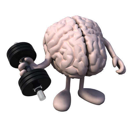 workout gym: human brain organ with arms and legs does weight training, 3d illustration