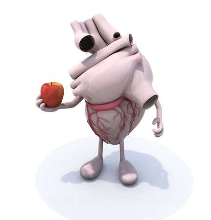human heart organ with hands and apple, vegetarian diet concept, 3d illustration Stock Illustration - 18160747