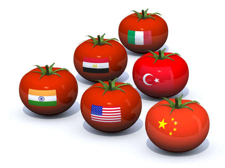 six tomatoes with country flag on the peel  china, usa, india, egypt, turkey, italy Stock Photo - 21855185
